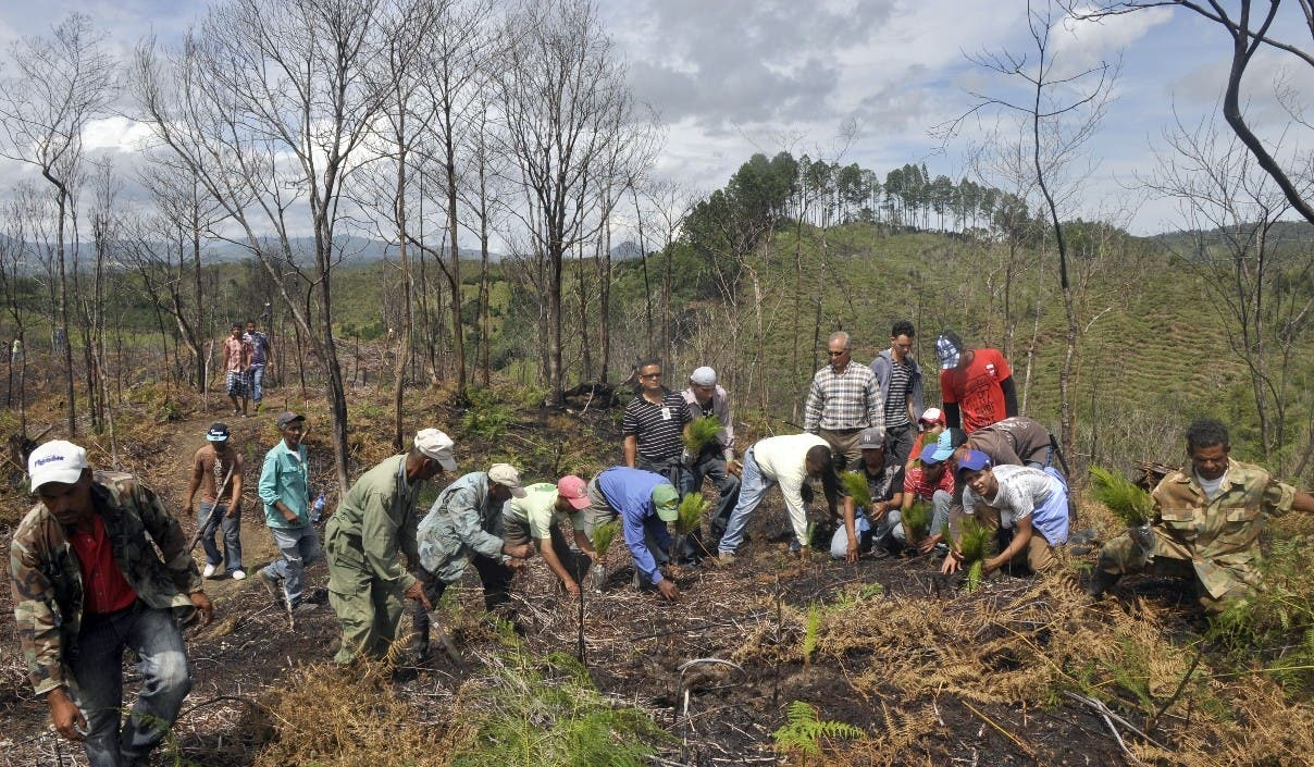 Las ONG piden recursos por RD$3,100 millones