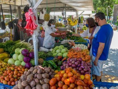 Alertan de posible desabastecimiento de productos si Agricultura no atiende el campo