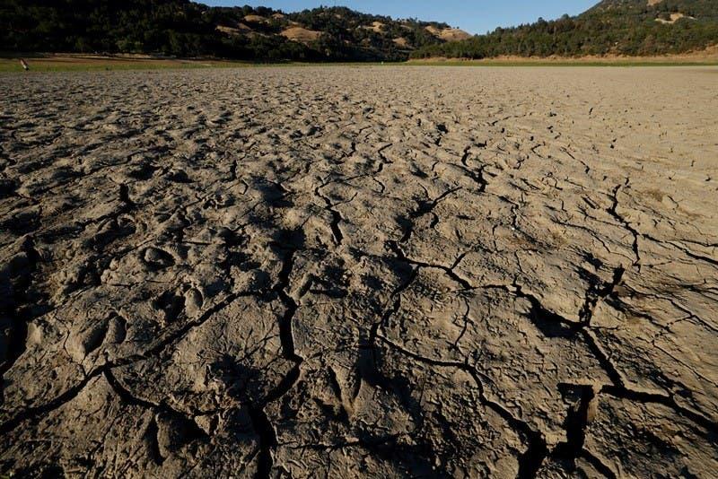 Cinco muertos por la ola de calor en EE.UU.