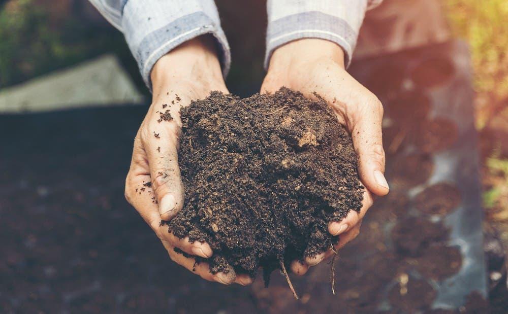 """La FAO alerta de las """"amenazas invisibles"""" de la contaminación del suelo"""
