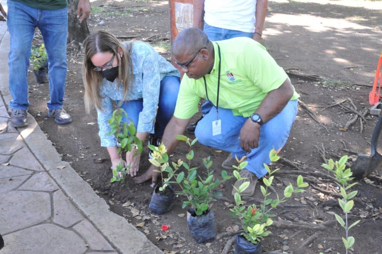Liga Municipal sembrará árboles y alumbrará calles en SDE