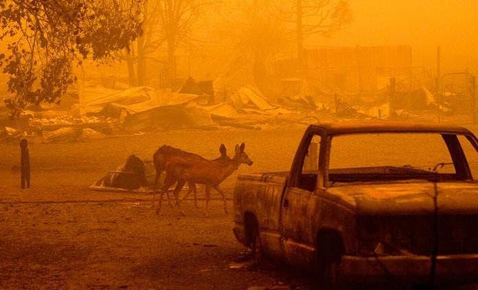 Incendio sigue amenazando a California tras un mes ardiendo