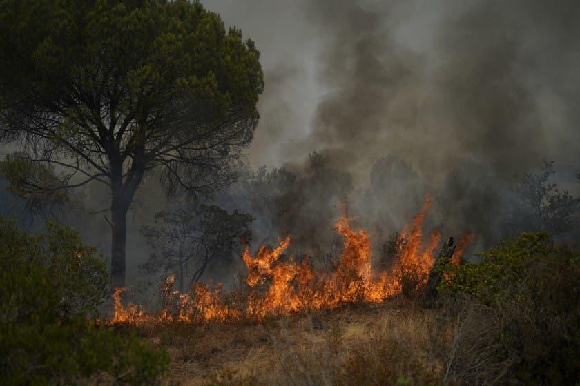 Miles huyen de casas, campamentos por incendios en Francia