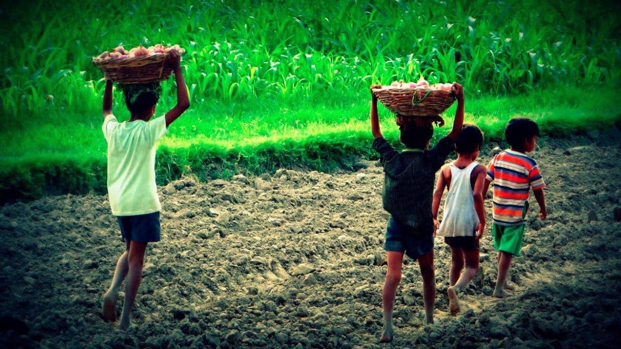 RD avanza en la eliminación del trabajo infantil