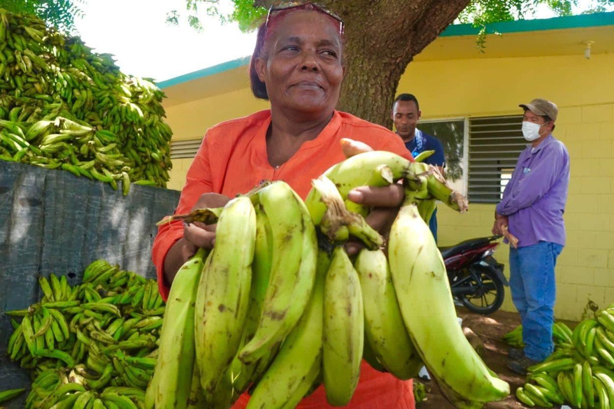 Inespre inicia ventas de plátanos a 1 peso