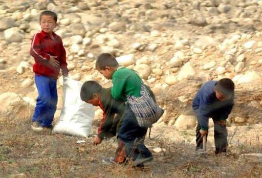 ONU: Niños y viejos peligran por hambruna en Corea del Norte