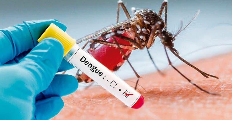 Desarrollan antiviral contra dengue, válido para tratar y prevenir